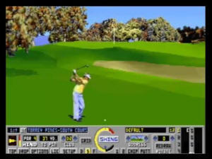 VIS Links: The Challenge of Golf screenshot